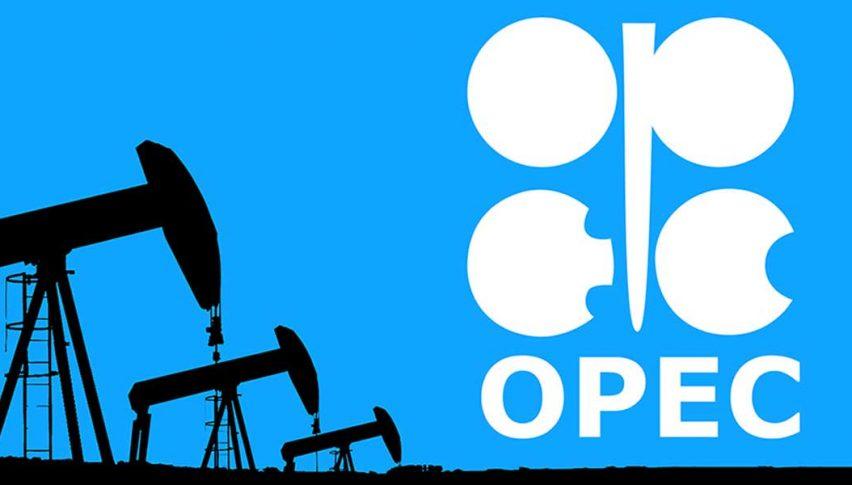 Suudi Arabistan'dan petrol üreticisi ülkelere çağrı