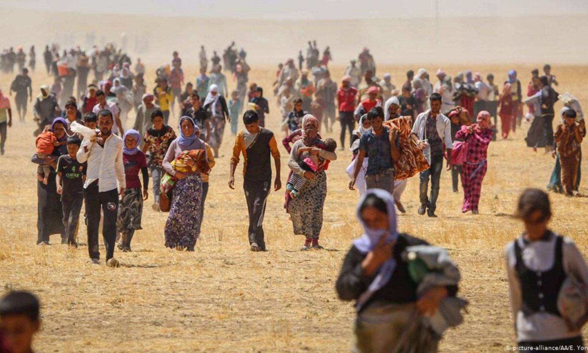 IŞİD'in Ezidilere dönük katliamının yeni istatistik bilgileri paylaşıldı