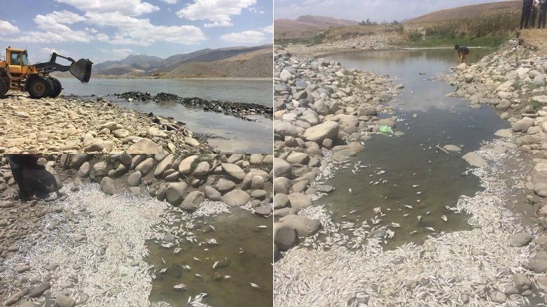 İran uluslararası anlaşmalara rağmen Kürdistan Bölgesinin suyunu kesiyor Küçük Zap Sirwan, Kholsa
