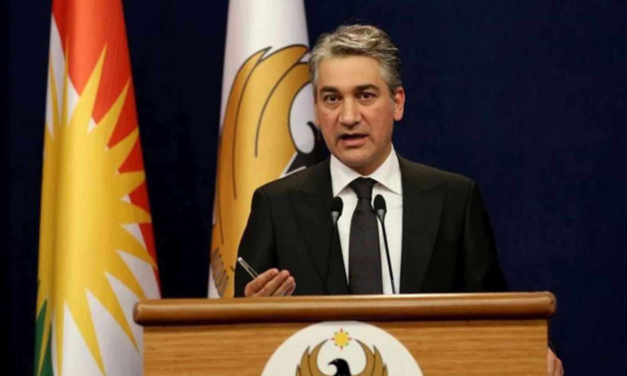 Kürdistan Bölgesi Hükümet Sözcüsü Adil: Türkiye'yi resmi olarak ağaçların kesilmesi konusunda uyardık