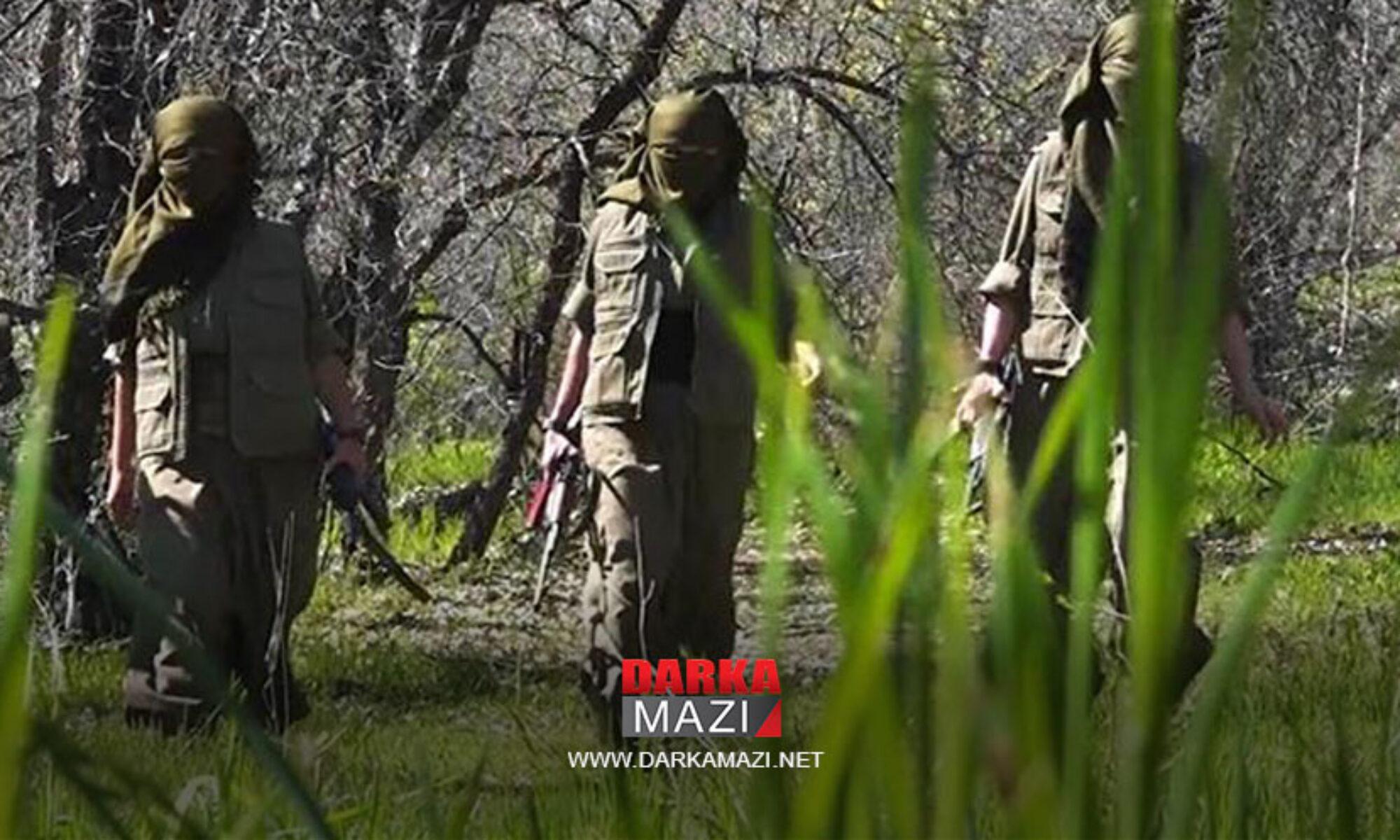 Eski PKK yöneticisi, siyasetçi Şefiq: PKK'nin yürüttüğü savaş başka yerden kontrol ediliyor