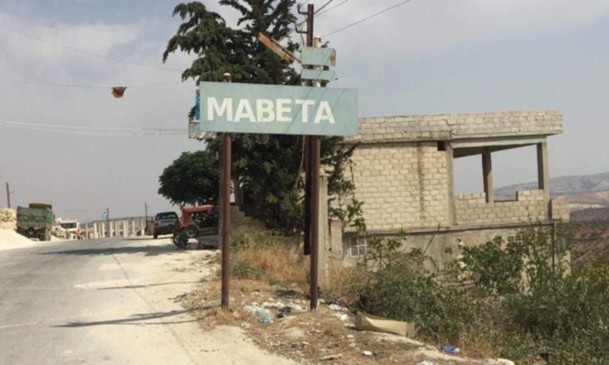 Türkiye'ye bağlı çetelerin Efrin'deki zeytin ağacı katilamı, bu kez Mabata'da 1500 ağaç kesildi