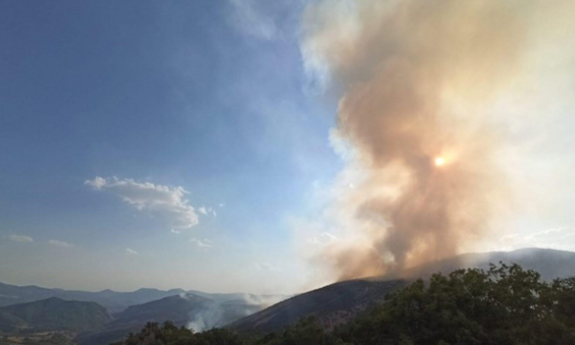 PAK: Kürdistan ve Türkiye kamuoyunu Dersim'deki orman yangını için harekete geçmeye çağırıyoruz