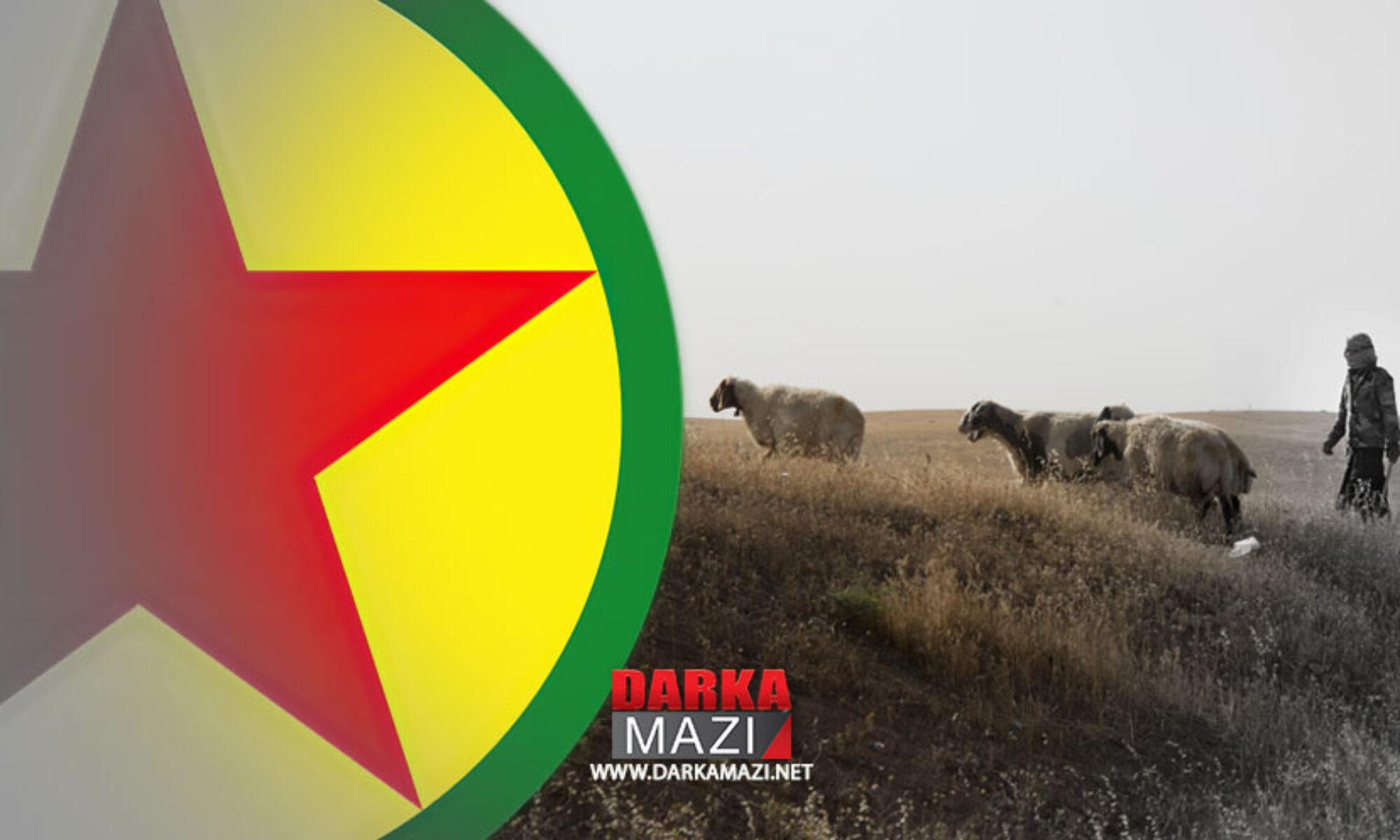 PKK sürü sahipleri ve çiftçilerden vergi adı altında haraç topluyor
