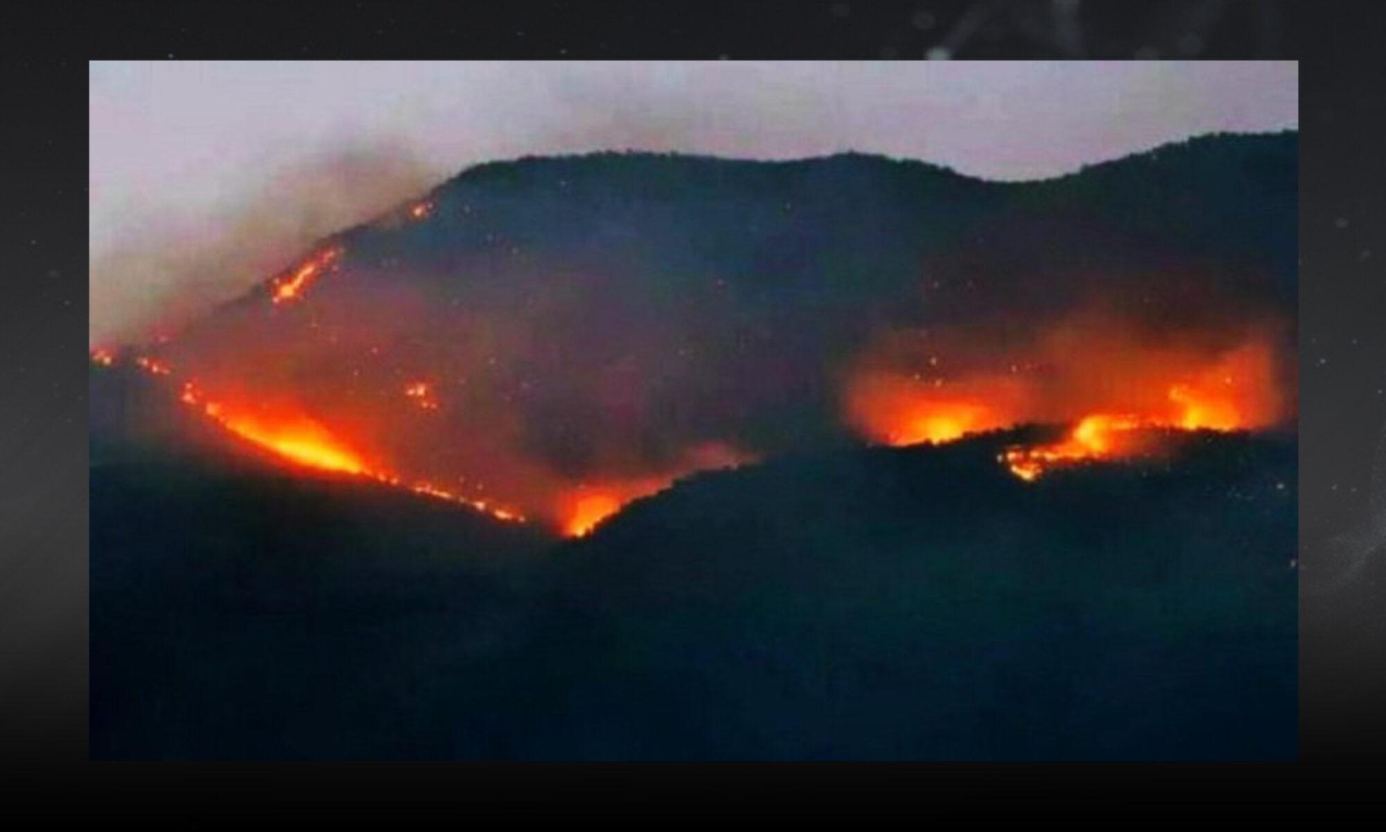 Dersim yanıyor, halkın müdahalesine izin verilmiyor